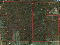 422 Acres, Mile From Town Blacktop : Cabool : Texas County : Missouri