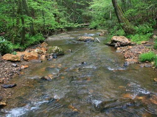 91.4 Acres Land Carroll County : Laurel Fork : Carroll County : Virginia
