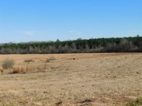 265 Acres In Rankin County In Flore : Florence : Rankin County : Mississippi