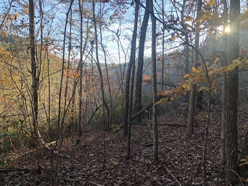 33.448 +/- Wooded Acres With Creek : Rydal : Bartow County : Georgia