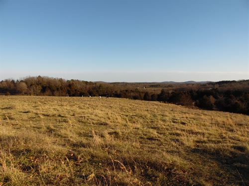 Farm For Sale In Southern Mo : Mountain Grove : Douglas County : Missouri