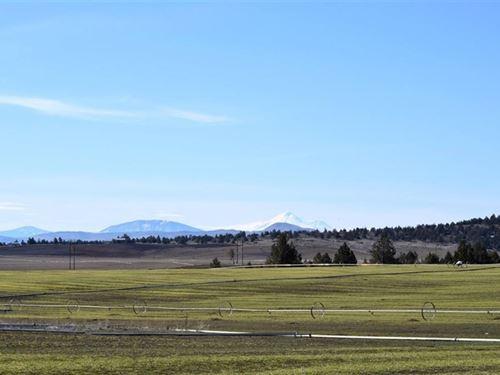 Peaceful 100 Acre Farm : Malin : Klamath County : Oregon