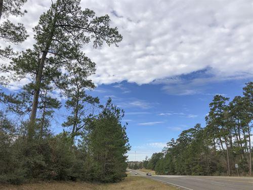 7 Acres Hwy 190 : Woodville : Tyler County : Texas