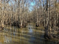 11 Ac Of Mostly Wooded Land : Covington : Walton County : Georgia