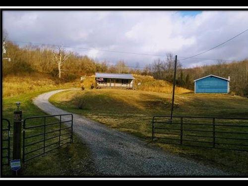 Beautiful Hobby Farm : Jackson : Ohio