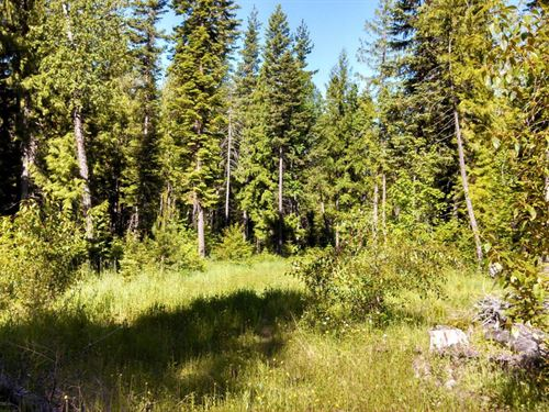 Lot 2 Haskill Basin : Whitefish : Flathead County : Montana