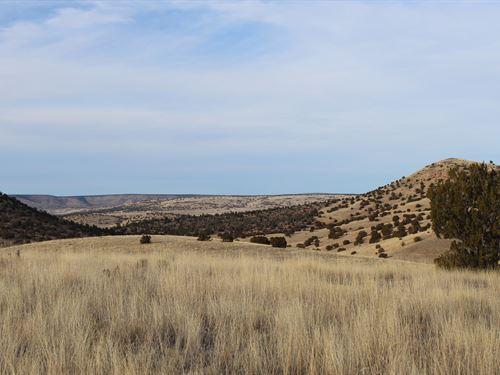 Over 35 Acres Easy Year-Round : Seligman : Yavapai County : Arizona