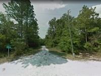Private Large Royal Highlands Lot : Weeki Wachee : Hernando County : Florida