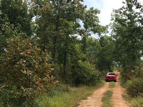 10 Acres Of Hunting Land : Eminence : Shannon County : Missouri