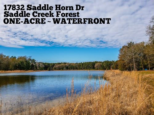 1 Acre In Grimes County : Waller : Grimes County : Texas