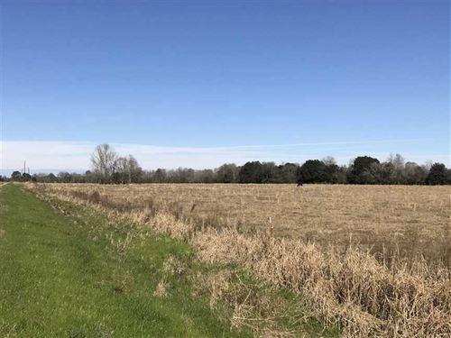 Highway 1163 Tract, Evangeline Par : Chataignier : Evangeline Parish : Louisiana
