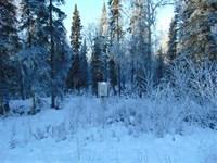 Great Spot to Build, 2 Acres Outsi : Soldotna : Kenai Peninsula Borough : Alaska