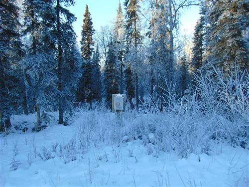 Great Spot to Build, 2 Acres Outsi : Soldotna : Kenai Peninsula Borough : Alaska