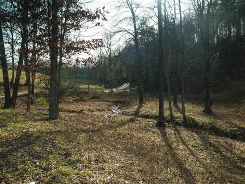 Building Lot in Carroll County VA : Dugspur : Carroll County : Virginia