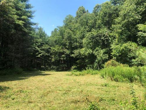 Hunting Recreational Land Floyd, VA : Willis : Floyd County : Virginia