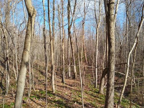 19 Acres, Cherokee County, Sc : Blacksburg : Cherokee County : South Carolina