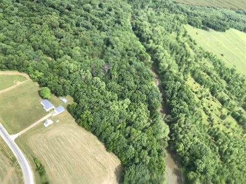 34 Acres Timber, Nice 3 Br Home : Plymouth : Schuyler County : Illinois