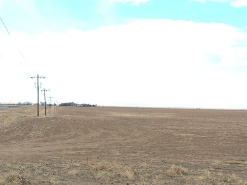 Smialek 160 : Bennett : Adams County : Colorado