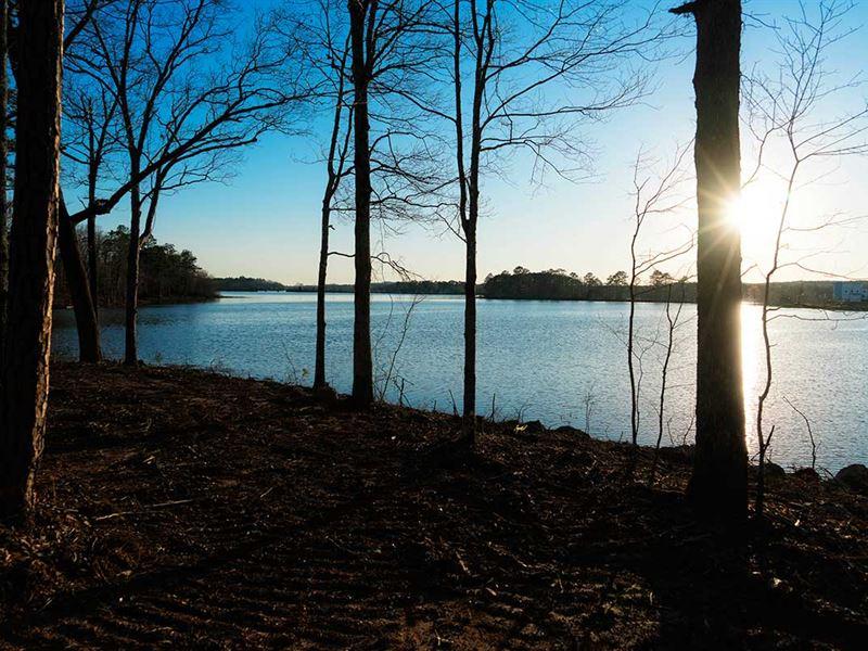 Deep Winter Discounts Lay Lake : Sylacauga : Talladega County : Alabama