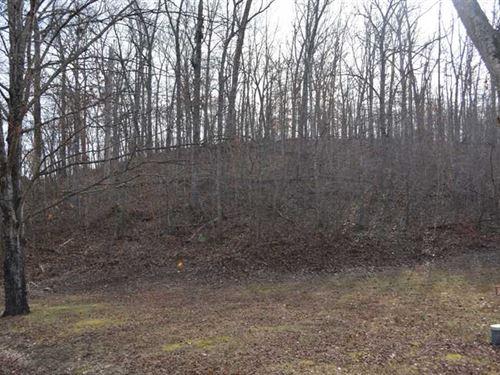 2.12 Acres For Sale in Reynolds CO : Ellington : Reynolds County : Missouri