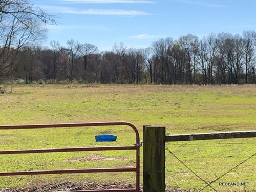 50 Ac, Pasture & Woods With Ho : Gilbert : Franklin Parish : Louisiana