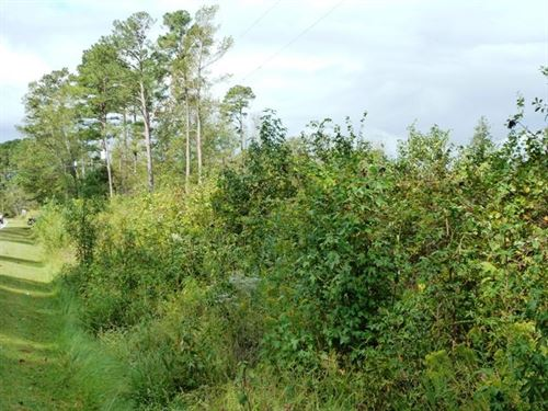 Residential Building Lot Within : Beulaville : Duplin County : North Carolina