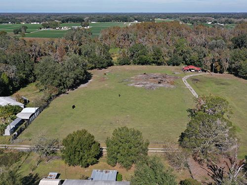 Plant City Acreage 3 : Plant City : Hillsborough County : Florida