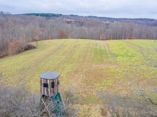 Sharps Ridge Rd, 55 Acres : McConnelsville : Morgan County : Ohio