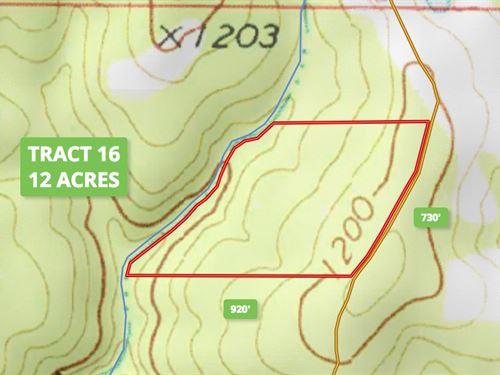 12 Acre Tract In Douglas County : Ava : Douglas County : Missouri