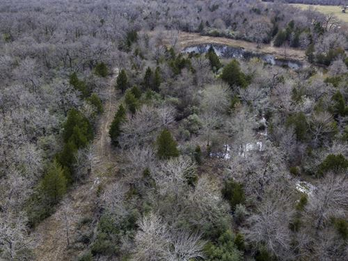 Land For Sale Near College Station : Normangee : Madison County : Texas