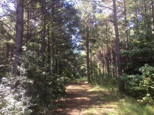 220 Acres Martinsville Road : Wesson : Copiah County : Mississippi