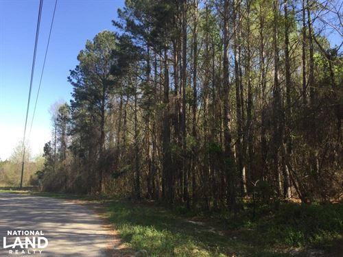 3.87 Acre Commercial Hwy 601 Tract : Lugoff : Kershaw County : South Carolina