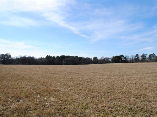 Rural Acreage Smith County, Tyler : Tyler : Smith County : Texas