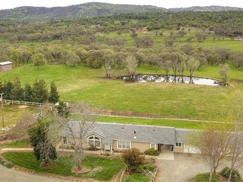 Loma Rica, Ca, Turn Key Horse Ranch : Loma Rica : Yuba County : California