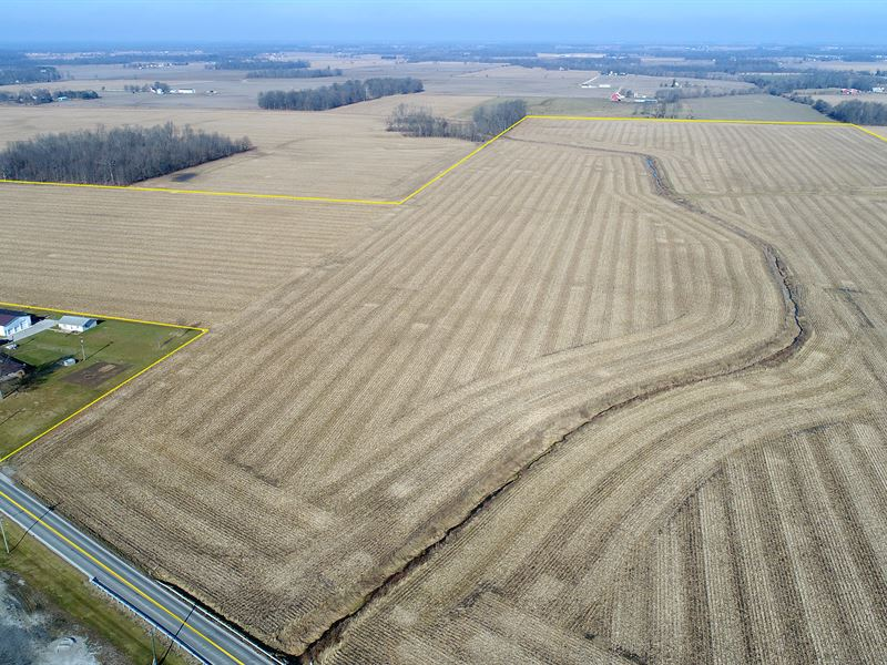 Land Auction In Clinton Co, In : Frankfort : Clinton County : Indiana