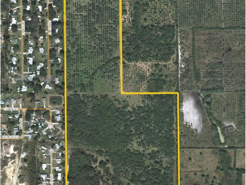 Mims Rural Acreage, 61 Acres : Mims : Brevard County : Florida