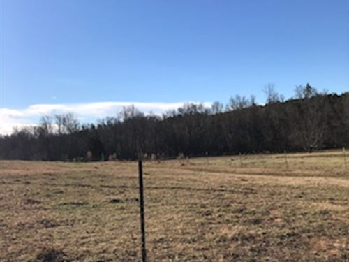 126 Acre Working Cattle Farm : Union : South Carolina