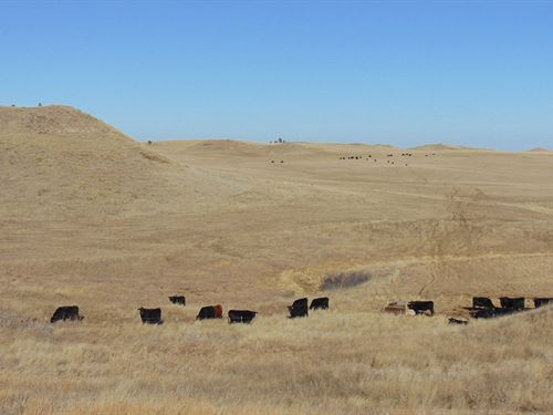 Southeast Montana Ranch : Ismay : Custer County : Montana