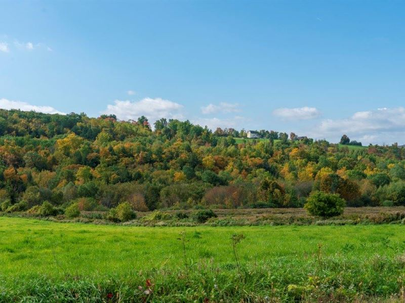 Upstate Farm Land Sale : Sharon Springs : Schoharie County : New York