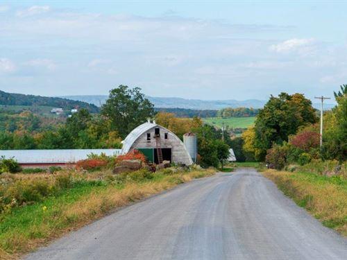 Your Mini Farm Awaits : Sharon Springs : Schoharie County : New York