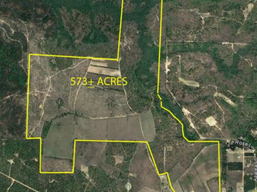 Live On-Site Auction : Box Springs : Marion County : Georgia