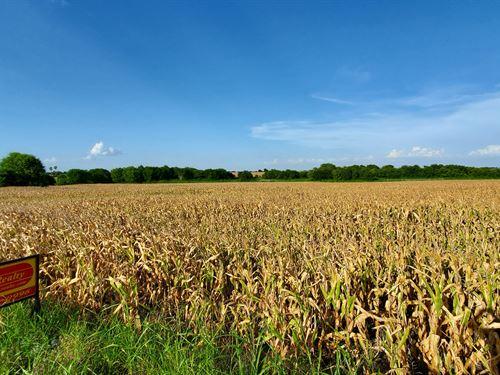 97 Acre Farm : Burlington : Milam County : Texas