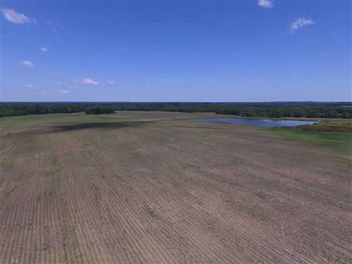 Farm/Pasture/Hunting Land-Montgom : Montgomery : Alabama