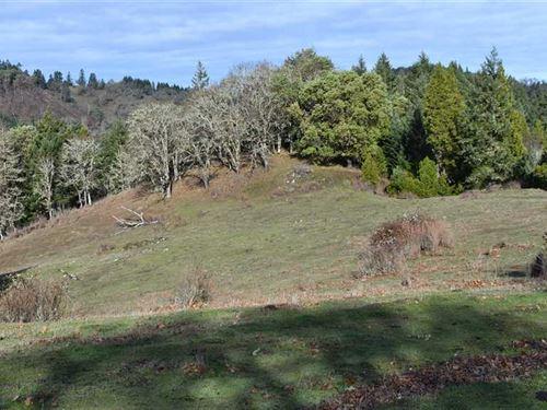 Elk Horn Ranch Parcel 1 : Myrtle Creek : Douglas County : Oregon