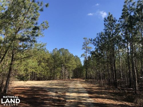 Bladen County Hunting And Timberlan : Council : Bladen County : North Carolina