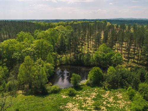 154 Acres Chatham, VA Pittsylvania : Chatam : Pittsylvania County : Virginia