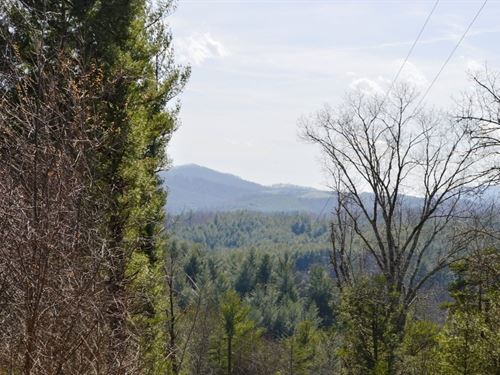 1.33 Acres Building Lot Piney Creek : Piney Creek : Alleghany County : North Carolina