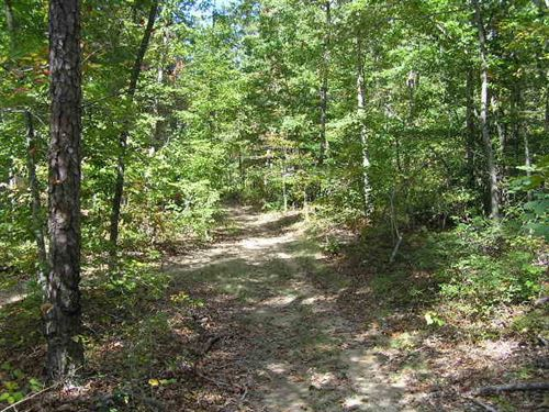 18 Wooded Acres In Dunlap : Dunlap : Sequatchie County : Tennessee