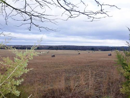 Prime Recreational Tract With Kiam : Albion : Pushmataha County : Oklahoma