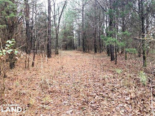 Bull Skull Road Homesite And Recrea : Leighton : Colbert County : Alabama